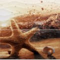 Панно Ривьера звезда 498*500 ПН103 из 2х пл