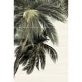 Панно Дель маре пальма из 3х пл. 747*500 PWU09DLM3