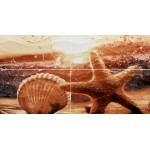 Панно Ривьера морская звезда 498*1000 PWU09RVR3